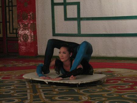 Mongolian contortionest