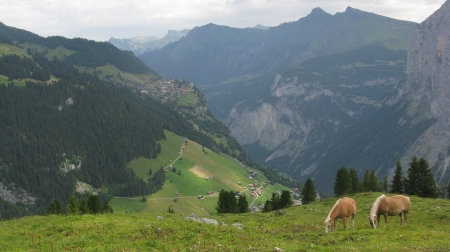 There are glorious views to the writers home village of Murren from Busenalp