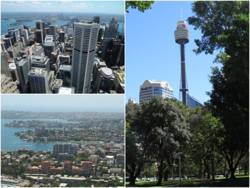 The Sydney Tower affords magnificent views over the City centre, Harbour and the entire Sydney conurbation.