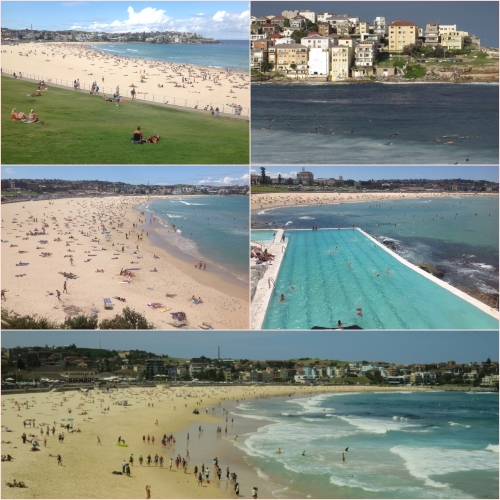 Bondi is always busy with locals, tourists and backpackers all keen to visit this iconic beach.