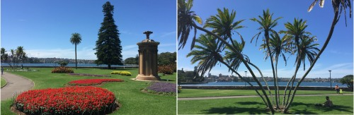 Sydney's Botanical Gardens provide a tranquil Harbourside haven.