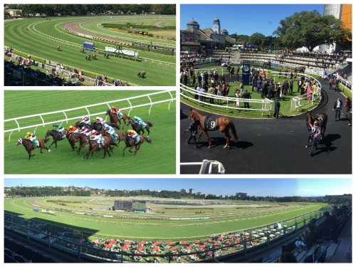 Many believe Australian Racing is the world's finest and both Sydney and Melbourne boast courses that rival any in the world. The writer has been visiting Sydney's famous Randwick racecourse for over 40 years and it was the site for his first business venture!