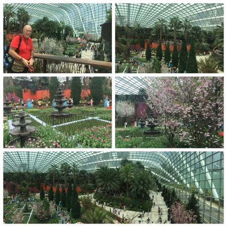16 The Flower Dome contains a number of themed Gardens all under a vast dome and is an air conditioned haven in humid Singapore!