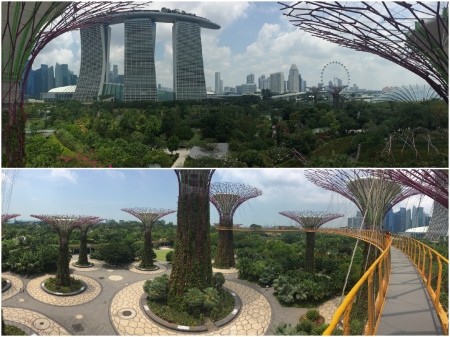 25 The Skyway provides magnificent views over the Gardens by the Bay.