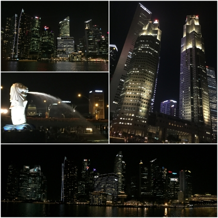 7 An evening cruise on the River offers a grand selection of spectacular night time views. The Merlion is the symbol of Singapore.