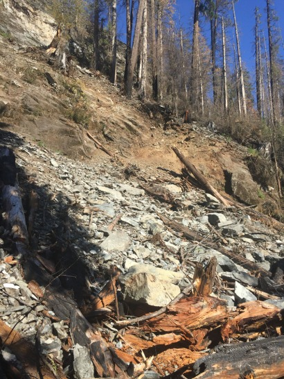 Forestry Roads are always liable to debris from landslides and rock fall. This landslip did not impact on the road.